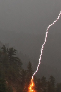 lightning_strike_tree