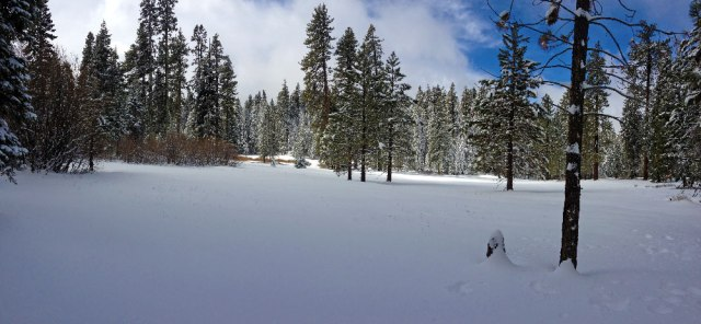 quaking_aspen_campground_snow_2014_04