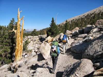 Hikers along the Pacific Crest Trail near Chicken Spring Lake