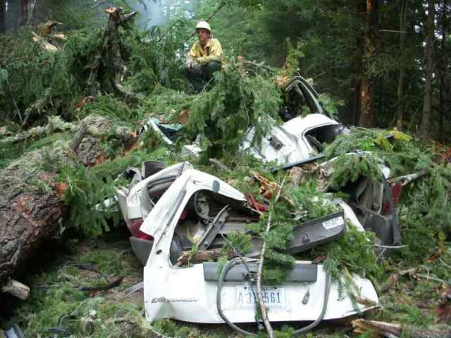 Photo from wildlandfire.com