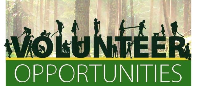 volunteer_opportunities