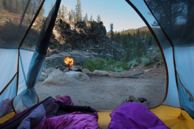 Views from the tent